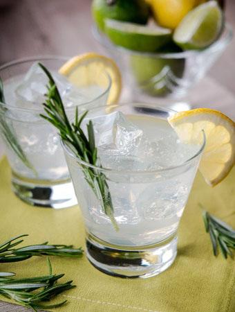 Sloe Gin Making Masterclass